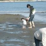 横浜市金沢区にある海の公園、潮干狩りのおすすめはこれだ!関東(神奈川、千葉)