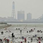 赤穂海浜公園、赤穂唐船サンビーチ潮干狩り場、関西の人気おすすめスポットはここだ!