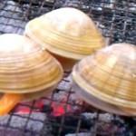 弁天島海浜公園潮干狩り、愛知県と静岡県の県境、おすすめ