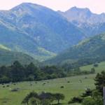 八ヶ岳のおすすめ!コテージが最高で都心からアクセスもしやすい!夏休み家族旅行で長野に行くなら八ヶ岳がおすすめ!