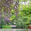 鎌倉の観光、穴場スポットを紹介、子供家族連れでも、おすすめです!