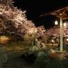 神奈川 から山梨方面秋のお出かけはここ!津久井~道志村~山中湖ドライブコース