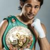 最強のボクサー日本人は山中慎介?身長、体重、凄さ、こいつは天才だ!