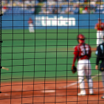 日本シリーズ歴代記録、優勝チーム、監督、MVP<プロ野球>